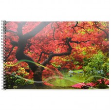 Альбом для рисования ACTION А4 40 листов - Краски осени, пруд