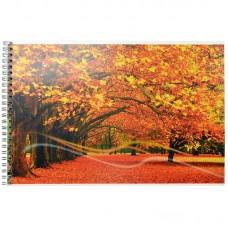 Альбом для рисования ACTION А4 40 листов - Краски осени, парк