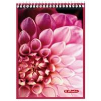 Блокнот Herlitz спираль А6 40 листов клетка, розовый цвет