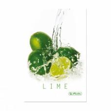 Записная книга Herlitz Fresh Fruit А5 96 листов в клетку, Лайм