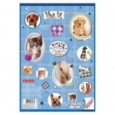 Альбом для рисования Herlitz Pretty Pets А4 50 листов