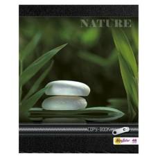 Тетрадь MagTaller А5 48 листов клетка, Nature-1
