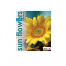 Тетрадь MagTaller А5 48 листов клетка, Sun flowers