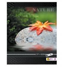 Тетрадь MagTaller А5 48 листов клетка, Nature-4